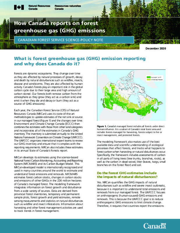 How does Canada report on forest GHG emissions?