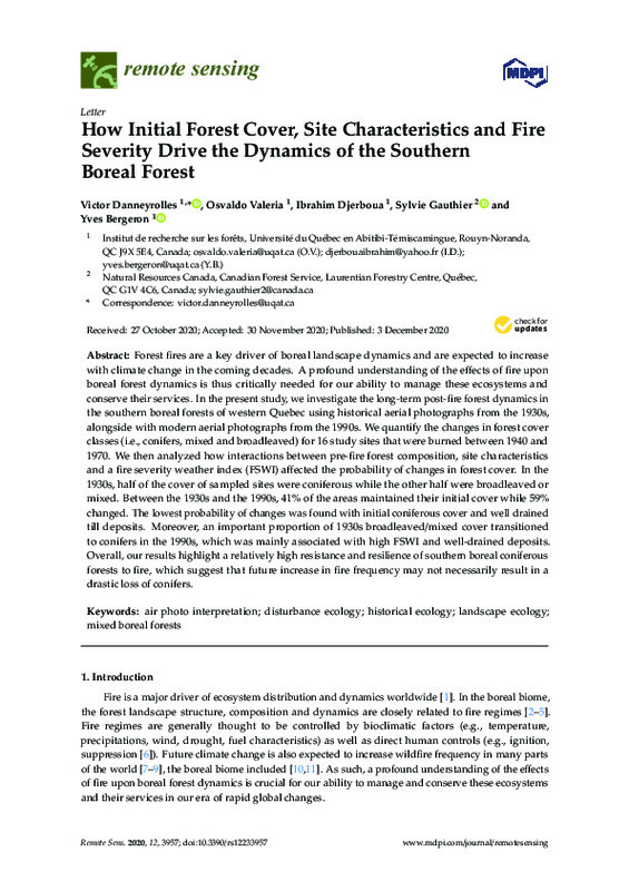 How Initial Forest Cover, Site Characteristics and Fire Severity Drive the Dynamics of the Southern Boreal Forest